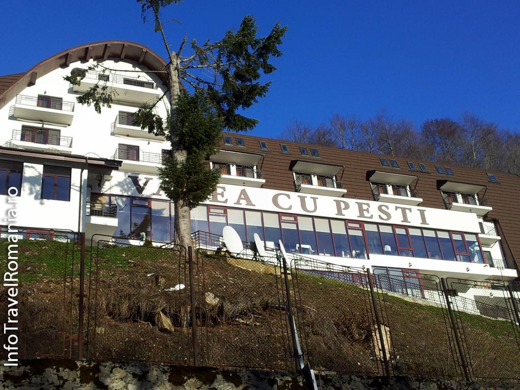 hotel-valea-cu-pesti-vidraru-47