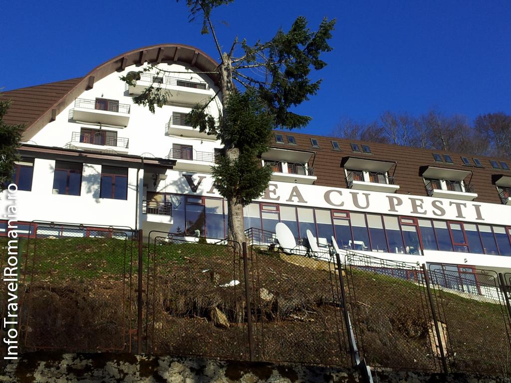 hotel-valea-cu-pesti-vidraru-46