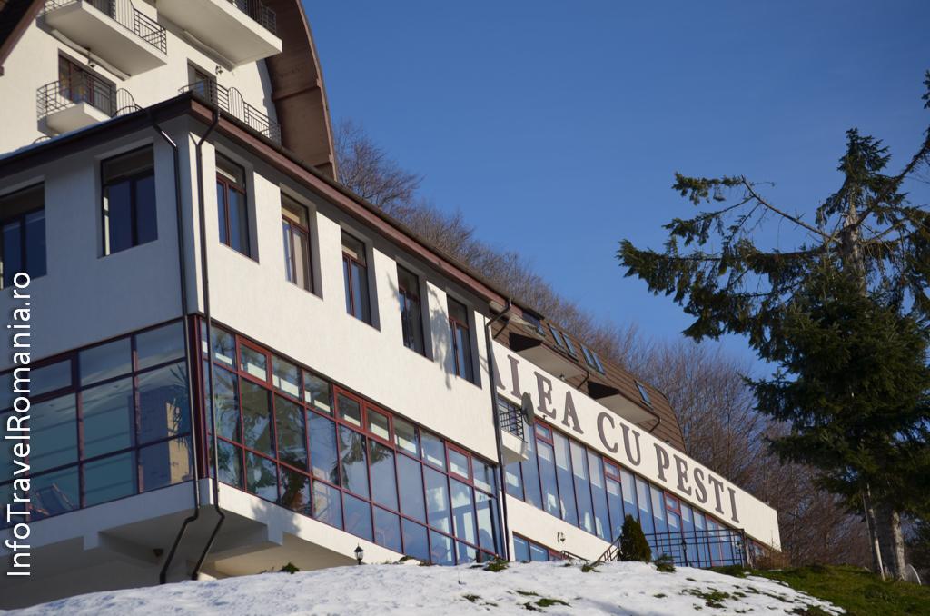hotel-valea-cu-pesti-vidraru-71