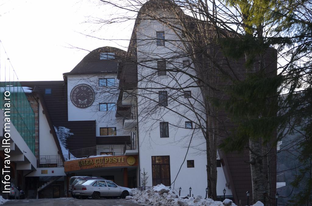 hotel-valea-cu-pesti-vidraru-76