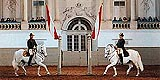 Scoala spaniola de calarie din Viena