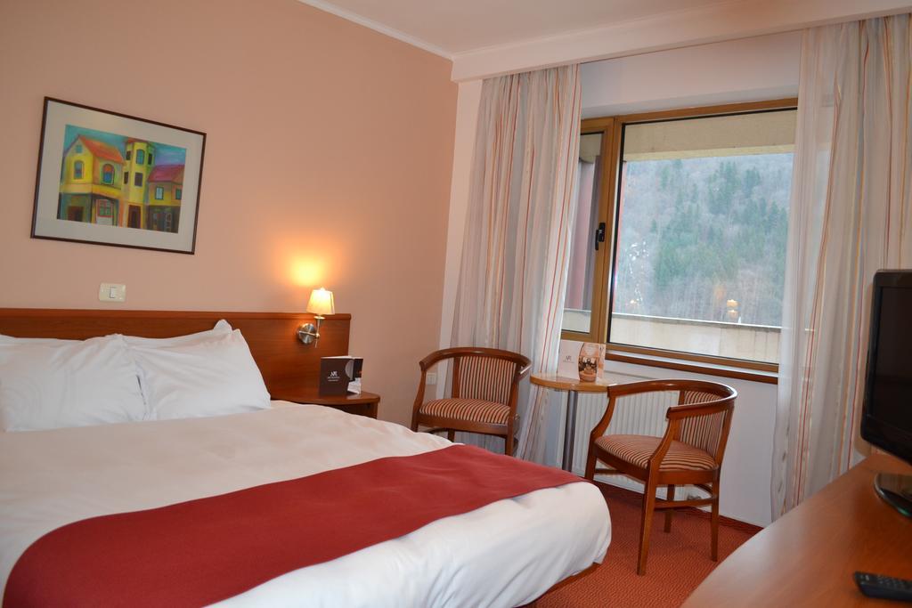 Hotel New Montana Sinaia 3