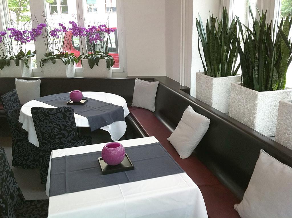 Hotel Hottingen Zurich 7