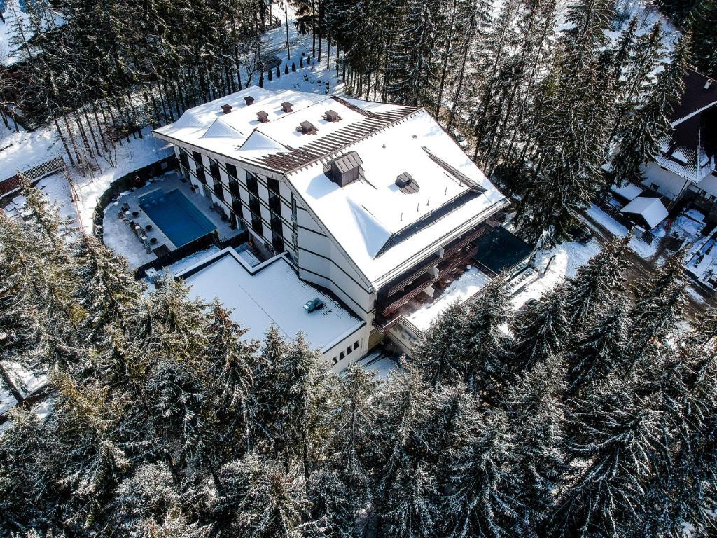 Hotel Elexus Predeal 6