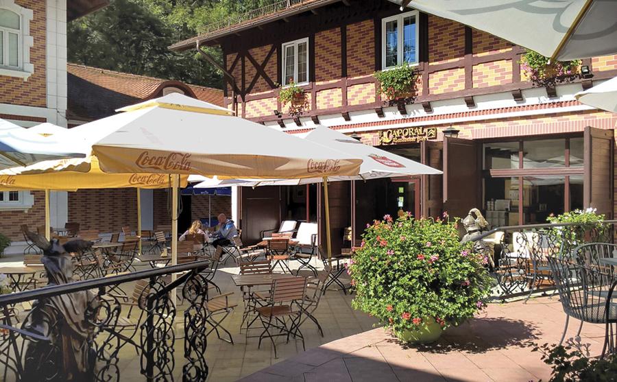 Hotel Bastion Sinaia 4