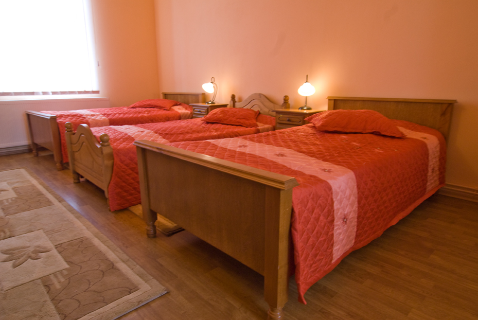 Hotel Marion Dumbraveni 4