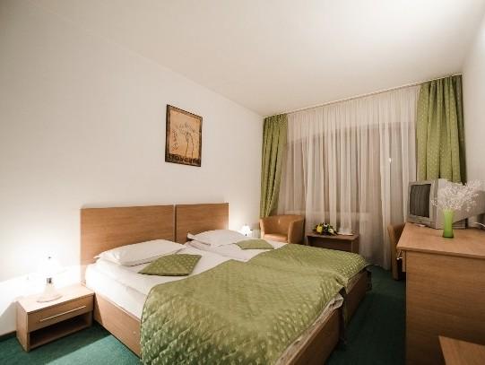 Hotel Posada Curtea de Arges 3