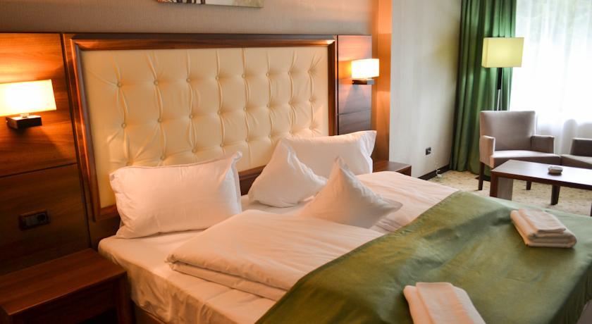 Hotel Hart Timisul de Sus 2