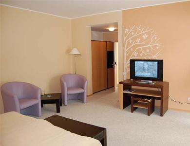 Hotel Complex Wolf Bran 5