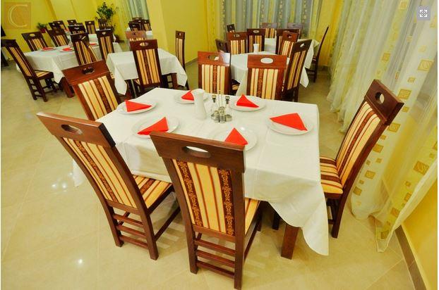 Pensiunea Camvas Inn Sighetu Marmatiei 8